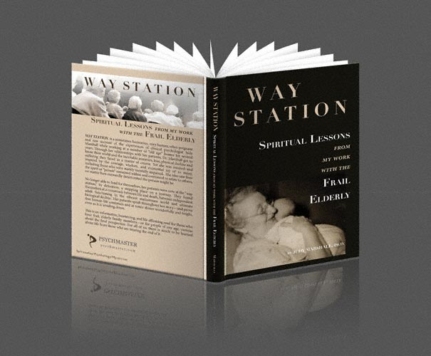 WAY STATION Book Cover